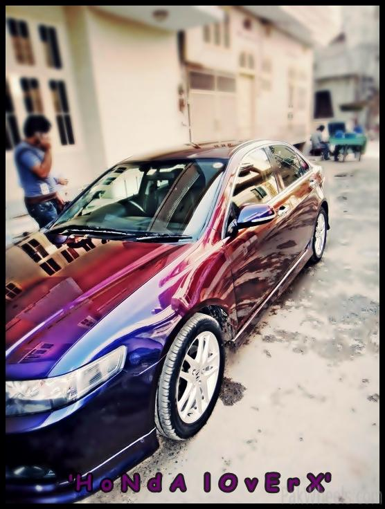 the only chameleon accord in pakistan - 365389