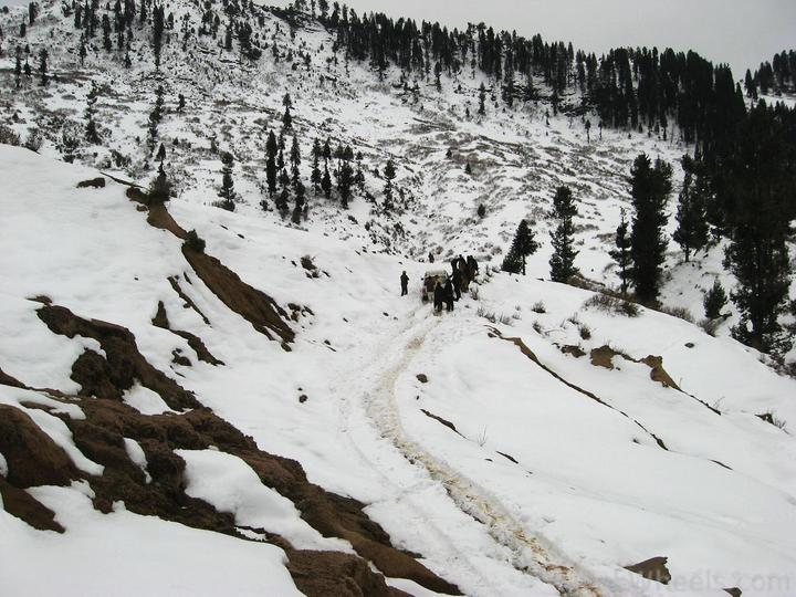 Beyond 4x4Engaged? 1st Jeep Snow Rally Malam Jabba 2011 - 195809
