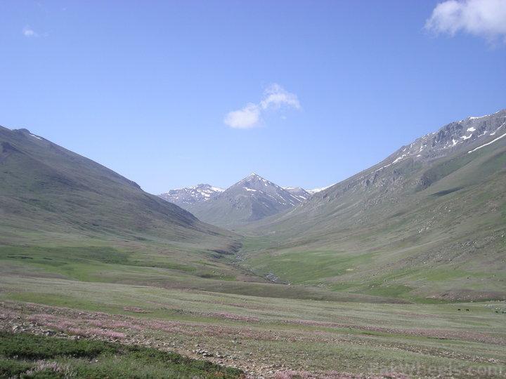 Team Unimog Punga 2011: Solitude at Altitude - 283258