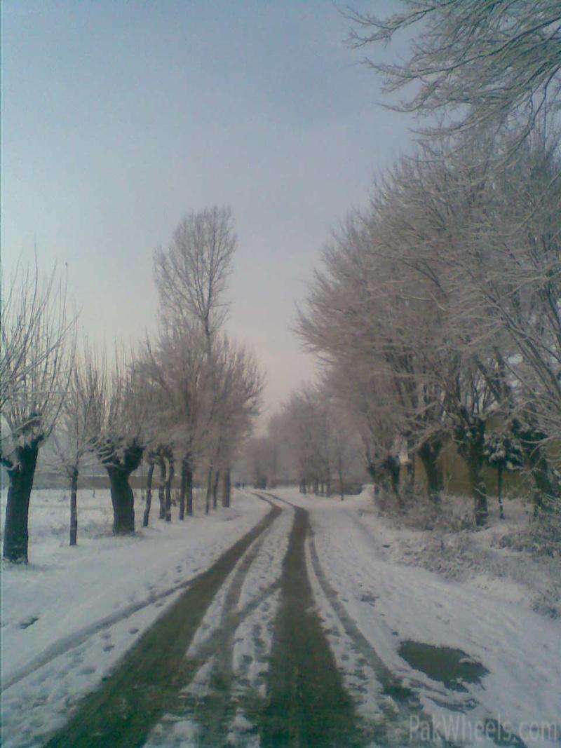 All Pakistan Joint Snow Cross Event 2012 Malamjabba - 355085