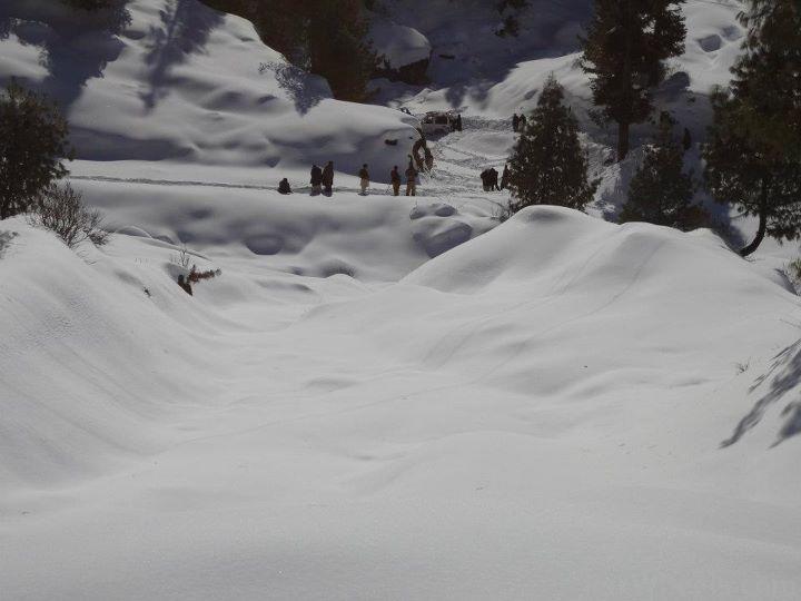 Frontier4x4club Snow Cross Rally 2012 Malam Jaba Swat - 363399