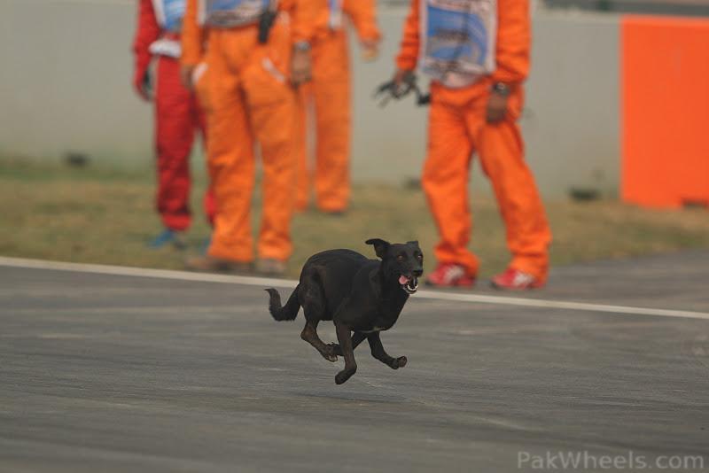 -Formula 1 - Season 2011 - 318545