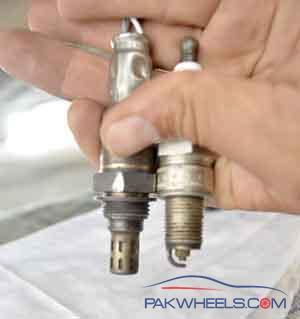 liana owners amp fan club -1550628