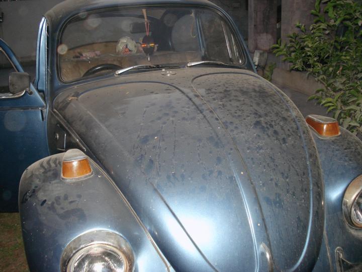 Volkswagen Club of Pakistan (VWCOP) - 15840