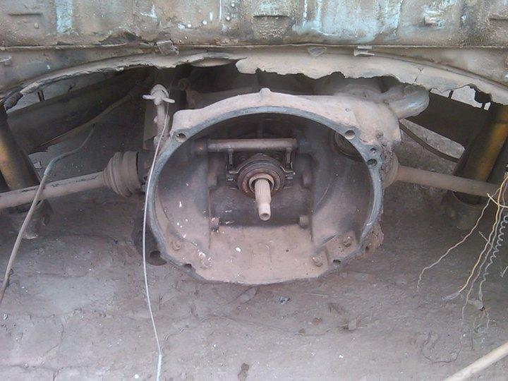Volkswagen Club of Pakistan (VWCOP) - 266406
