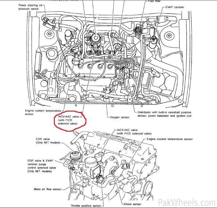 Nissan Almera Wiring Diagram - Everything Wiring Diagram on