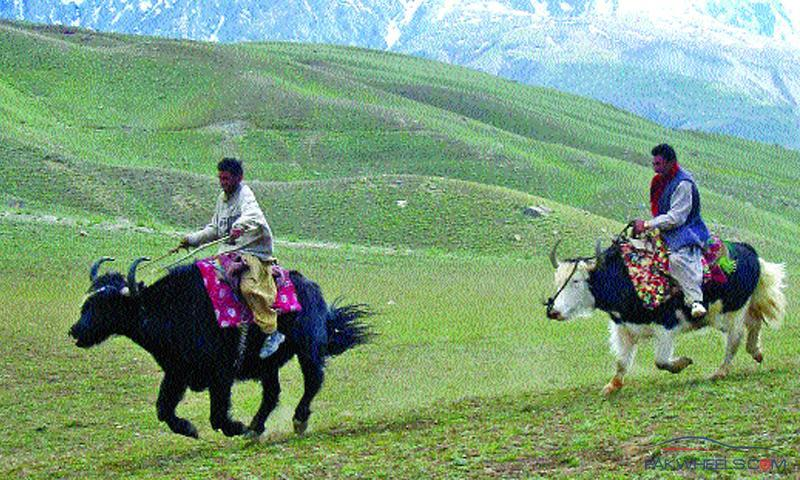 Is It Safe To Travel To Chitral Pakistan