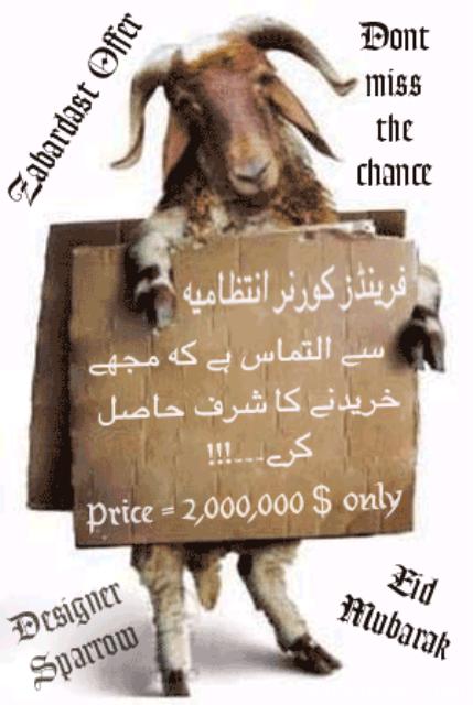 mandi 2009 for all eid-ul-azha lovers++==~~ - Non Wheels ...Qurbani Cow 2009